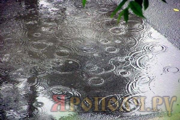 осеннее похолодание, август, дождь, лужа, асфальт