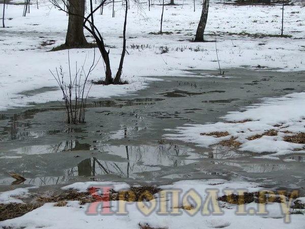 МЕТЕОНОВА погода в Домодедово на 14 дней подробный