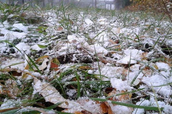 первый снег,сентябрь,