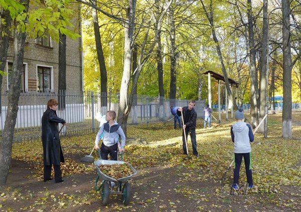 Вязники,летний парк на улице Герцена,