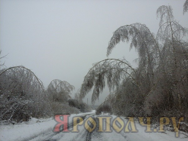 ноябрь 2016,зима,мстёра-шустово,вязниковский район,ледяной дождь,