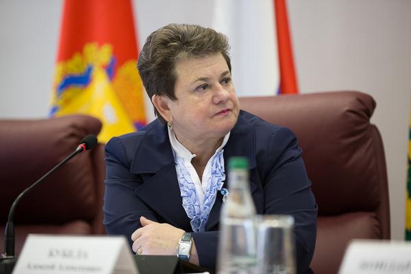 визит губернатора Владимирской области в Гороховец,Гороховец,оргкомитете,Орлова Светлана Юрьевна,