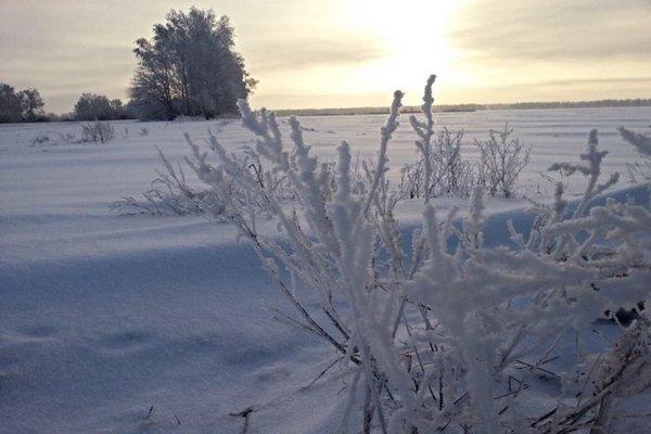 зима,мороз,поле,