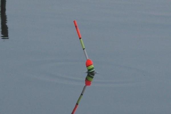 летняя рыбалка,поплавок,