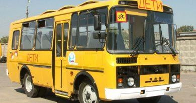 ПАЗ,автобус,детский автобус,
