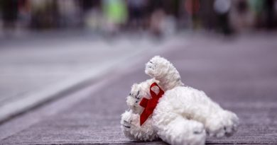 игрушка лежит на дороге,
