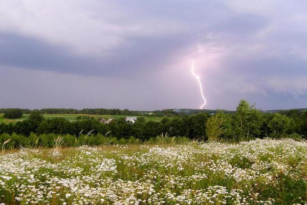 Погода на понедельник, 8 июля: кратковременные дожди и грозы