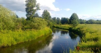 лето,река Тара,Мстёра,Вязниковский район,