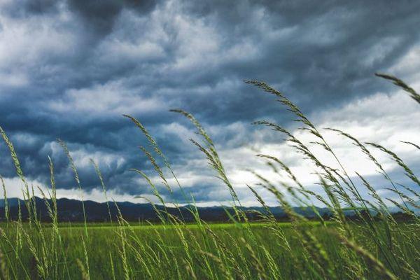 Погода на 2 июля: жара, шквалистый ветер и в отдельных районах гроза и  град