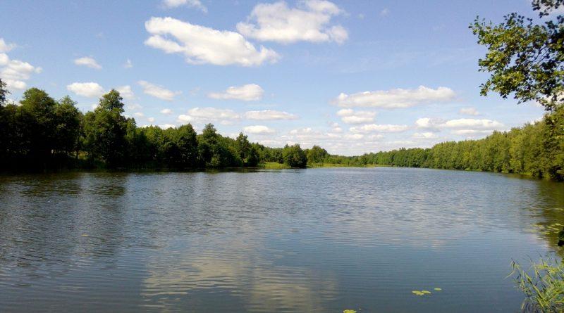 река Мстёрка,Мстёра,Вязниковский район,лето,август,