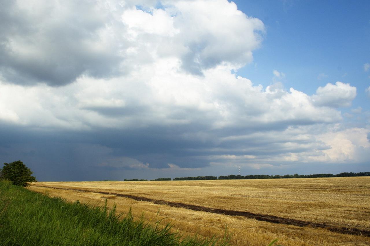 Погода на четверг, 30 августа: днём дождь с грозой и сильным порывистым ветром
