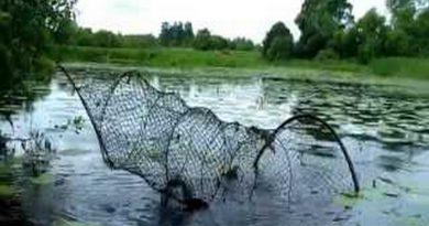 река,вентиль,сеть,браконьерство,