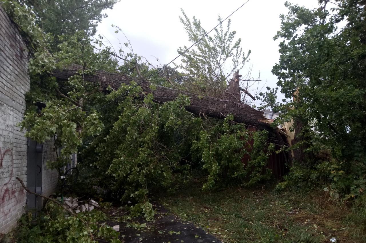 Из-за разгула стихии 99 населенных пунктов в регионе остались без электричества