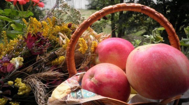 яблоки,яблочный спас,