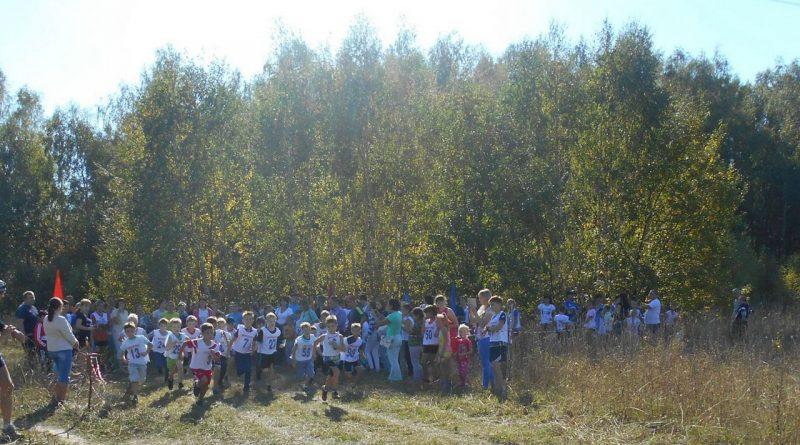 кросс,Чудиново,Вязниковский район,бег,золотая осень