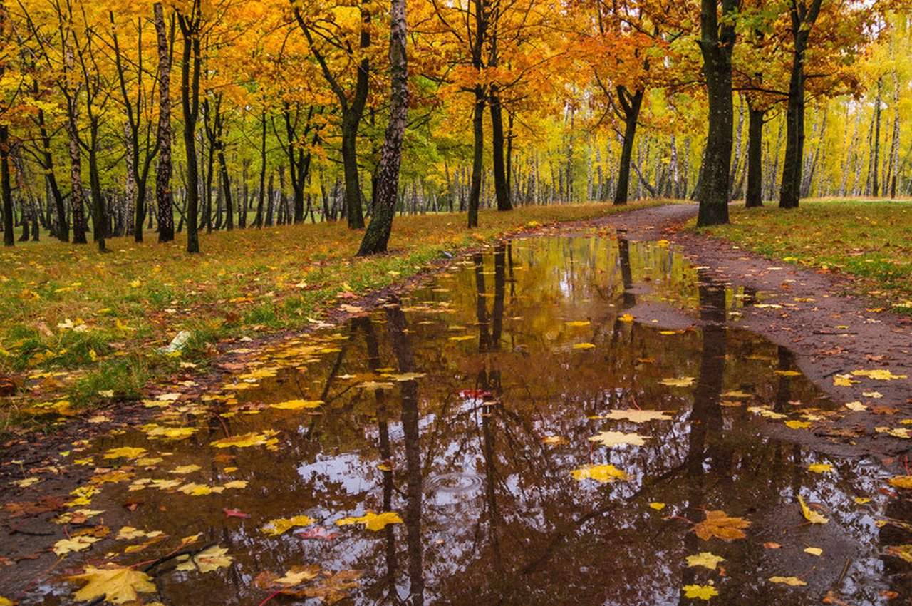 Погода на субботу, 29 сентября: в регион приходят первые заморозки