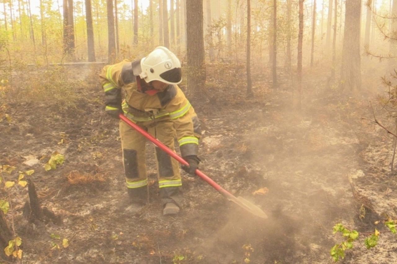 Площадь лесного пожара стремительно уменьшается