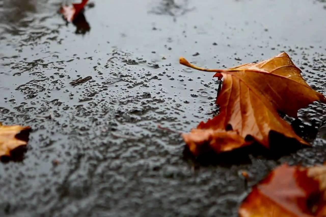 Погода на вторник, 23 октября 2018 года