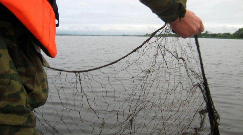 сети на озере,