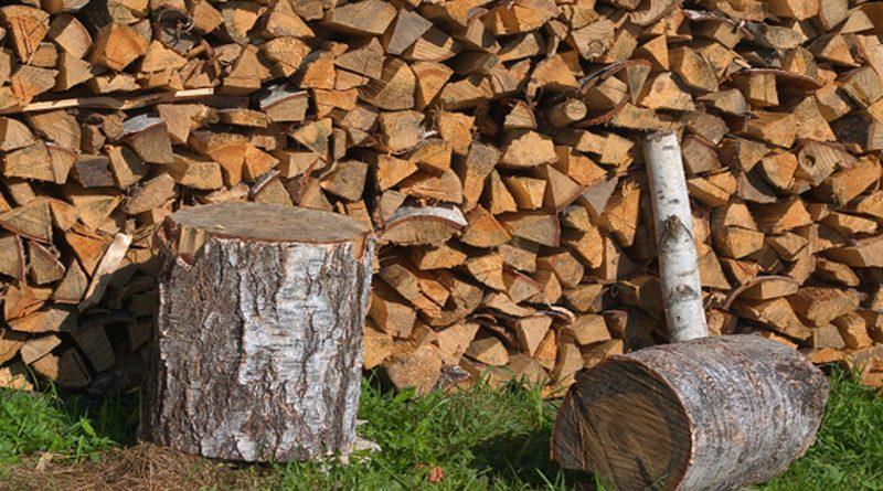 заготовка дров,
